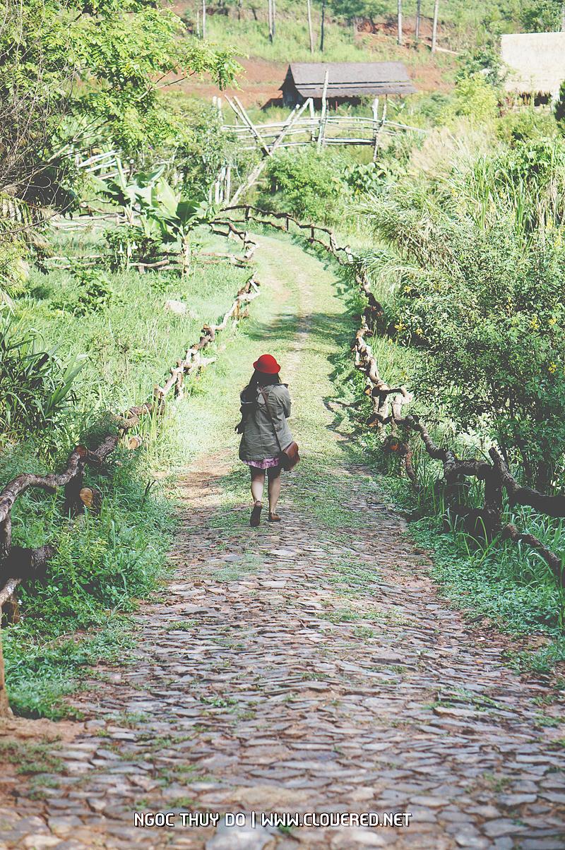 Thung lũng làng Cù Lần